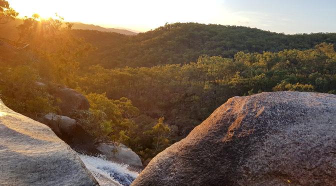 Willkommen zum Davies Creek Nationalpark!