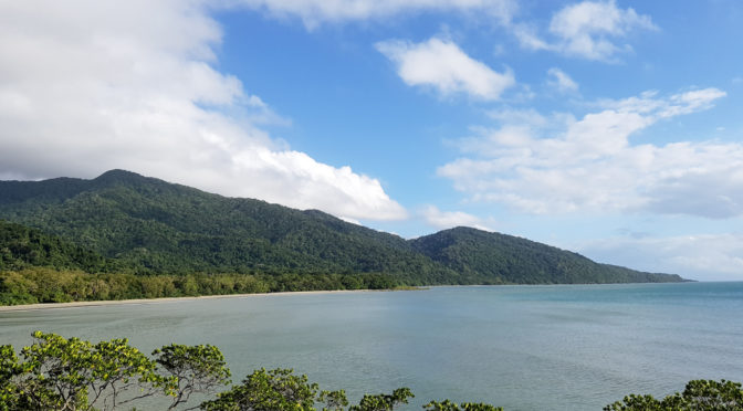 Roadtrip Cape Tribulation – Tag 4